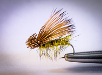 Elk Hair Caddis fly