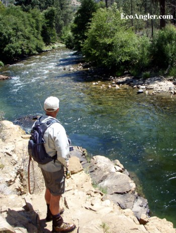 The Ecological Angler - Forks of the Kern River (Confluence