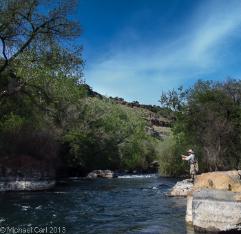The ecological angler lower stanislaus river for Stanislaus river fishing