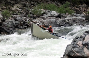 Running rapids on the Middle Fork Salmon River in Idaho