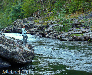 The ecological angler north fork stanislaus river for Stanislaus river fishing