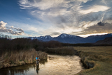 Fly Fishing the Lower Owens River Wild Trout Section