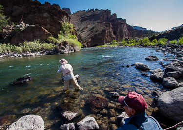 The ecological angler north fork shoshone river for Cody wyoming fly fishing