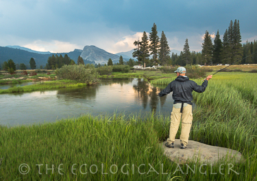 The ecological angler fly fishing yosemite national park for Fishing in yosemite