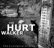 Drought impact on East Fork Walker River