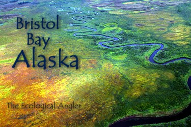 Bristol Bay Alaska Salmon and Trout Rivers