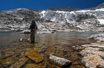 Fly Fishing Sierra Nevada Lakes