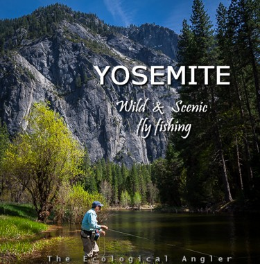 Fly Fishing Yosemite National Park Rivers