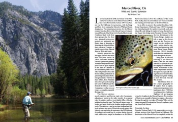 Northwest Fly Fishing Article featuring the Wild & Scenic Merced River