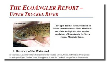 The EcoAngler Reports